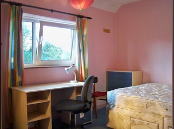 EasyRoommate UK - Superior 4 bed student house £366 pcm includes bills, Loughborough - £366 pcm