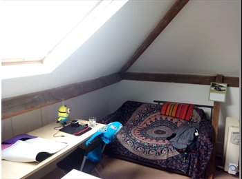 EasyRoommate UK - Attic double room for one person available in quiet house in Botley, Botley - £450 pcm