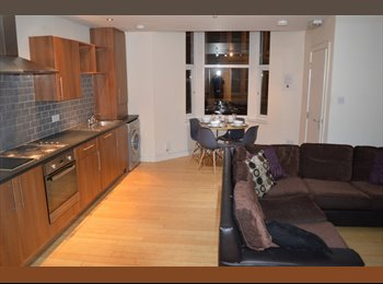 EasyRoommate UK - ROOM IN STUDENT FLAT IN JESMOND AVAILABLE FROM 01/07/17 £95pw, Princess Square - £412 pcm