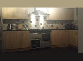 EasyRoommate UK - King size room to rent Monday to Friday , Swindon - £450 pcm