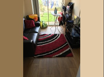 EasyRoommate UK - Luxury Small Double Room in great shared house in Rg12, Bracknell - £450 pcm