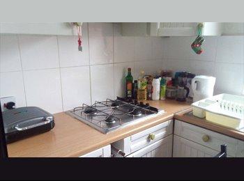 EasyRoommate UK - House to Let Over the Summer , Inner Avenue - £325 pcm