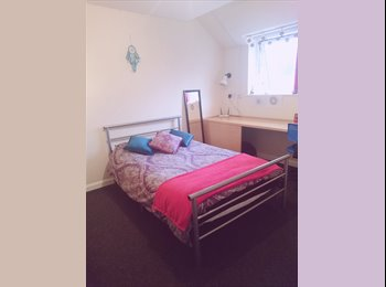 EasyRoommate UK - Double room for rent Asap - close to city centre and train station , Cutlers View - £303 pcm