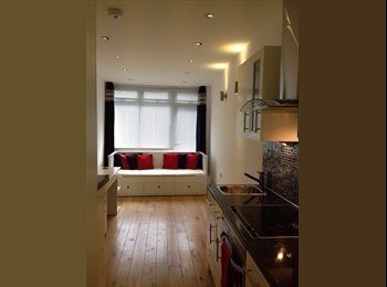 EasyRoommate UK - Amazing high standard studio flat apartment in EDMONTON N18 available to rent, Edmonton - £900 pcm