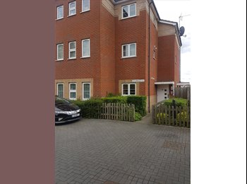 EasyRoommate UK - Single Or Double room to Rent, Inner Avenue - £345 pcm