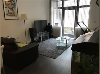 EasyRoommate UK - Looking for flatmate for 6 or 12 month lease, Jewellery Quarter - £475 pcm