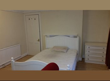 EasyRoommate UK - Large bedroom available for friendly person, Swansea - £320 pcm