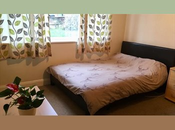 EasyRoommate UK - Spacious Bright Double Room in Eltham for a dog lover, Eltham - £450 pcm