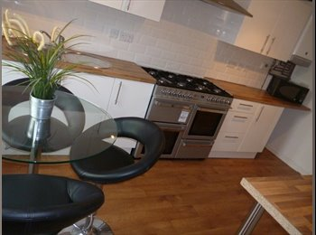 EasyRoommate UK - newly renovated mid terraced property, Mannamead - £400 pcm