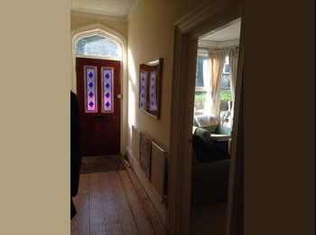EasyRoommate UK - 2 double rooms available for professionals, Crookesmoor - £370 pcm