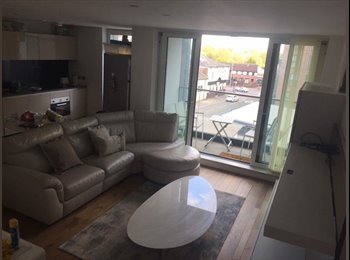 EasyRoommate UK - Charming double bedroom in lovely flat , New Islington - £550 pcm