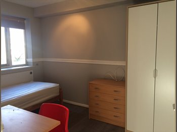 EasyRoommate UK - Large Double Rooms for Single Occupancy (Perfect for Heathrow Staff), Feltham - £550 pcm
