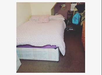 EasyRoommate UK - 1 double bedroom in a 3 bed house, Reading - £400 pcm
