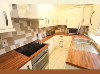 EasyRoommate UK - 1 room in Headingly great for students , Headingley - £400 pcm