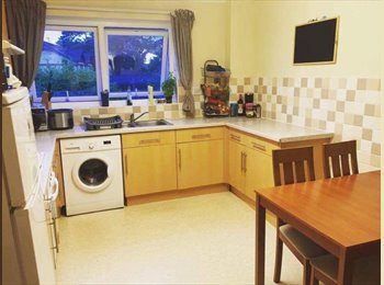 EasyRoommate UK - Double room with private bathroom, Boscombe - £650 pcm