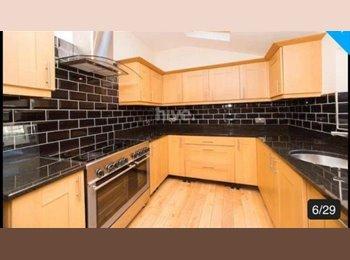EasyRoommate UK - En suite double room available , Jesmond - £380 pcm