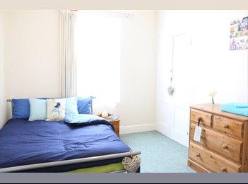 EasyRoommate UK - Professional Room - St. Judes, Mannamead - £370 pcm