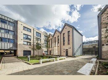 EasyRoommate UK -  Large En-Suite Room in Bath to let for June / July (Students Only), Bath - £624 pcm