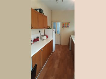 EasyRoommate UK - Double Large room near the City Center, Leicester - £300 pcm