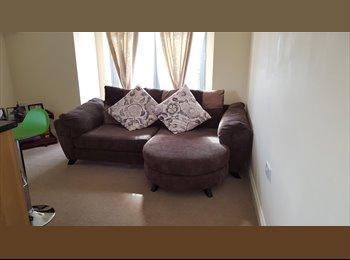 EasyRoommate UK - DOBLE ROOM IN NICE FLAT, CLEAN AND QUIET, Newbury Park - £600 pcm