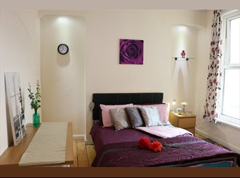 EasyRoommate UK - Large Double Room in Professional House Share, Mannamead - £390 pcm