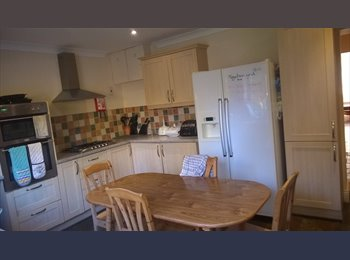 EasyRoommate UK - Beautiful Mansion in Queens Park, Boscombe - £410 pcm