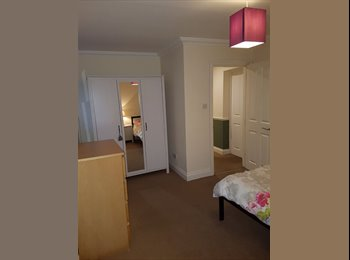 EasyRoommate UK - Large single room, Bedford Park - £725 pcm
