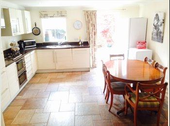 EasyRoommate UK - Large town house, double room, own bathroom, Cheltenham - £475 pcm