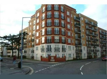 EasyRoommate UK - Beautiful flat to share, The Polygon - £428 pcm