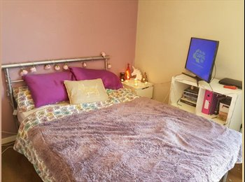 EasyRoommate UK - Spacious Double Bedroom to Rent off Smithdown Road £85 pw BILLS INCLUDED, Mossley Hill - £340 pcm