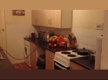 EasyRoommate UK - nice double bedroom, Tyseley - £370 pcm