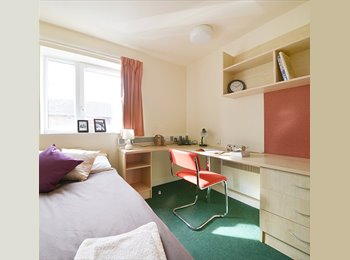 EasyRoommate UK - Room available for students!!!, Highgate - £512 pcm