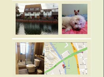EasyRoommate UK - nice room in mile end, Mile End - £720 pcm