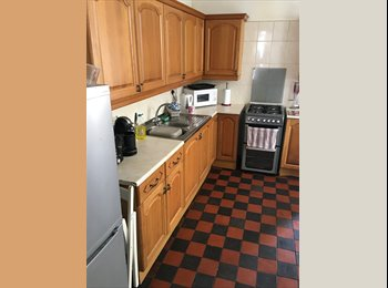 EasyRoommate UK - 2 Double rooms to rent - professionals only please, Cathays - £320 pcm