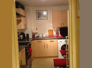 EasyRoommate UK - Double room in Fitzrovia, W1  (£875 PCM), Soho - £875 pcm