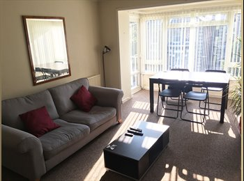 EasyRoommate UK - Double Room Available near Hove's Palmeira Square, Hove - £512 pcm