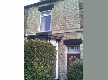 EasyRoommate UK - NICE SINGLE ROOM IN CROOKES S10 £275 pcm PLUS BILLS, Crookes - £275 pcm