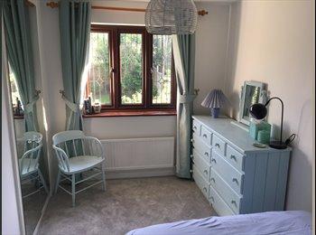 EasyRoommate UK - Double room in 4 bedroom house, Mon-Fri, Basingstoke - £430 pcm