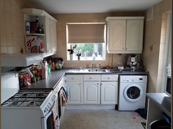 EasyRoommate UK - 3no of Rooms to Rent in Chichester (Quiet Location) (2no double, 1no single) - *READ DESCRIPTION, Chichester - £350 pcm