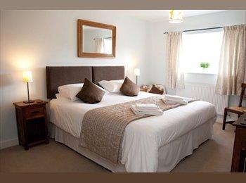 EasyRoommate UK - Room to rent in Gay Friendly House , Hay Mills - £395 pcm