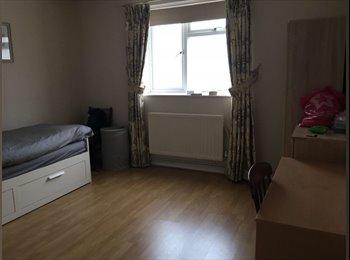 EasyRoommate UK - Spacious double room in a cosy flat in Brockley, Brockley - £625 pcm