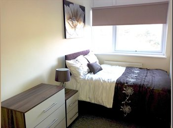 EasyRoommate UK - Cosy Double Room - 8 mins Tulse Hill Stn, Tulse Hill - £650 pcm