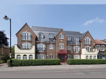 EasyRoommate UK - Double room available in lovely flat , Grange Park - £517 pcm