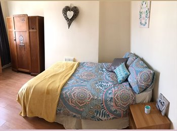 EasyRoommate UK - TWO SUMMER LETS Fabulous location, West End, Leicester, Westcotes - £360 pcm
