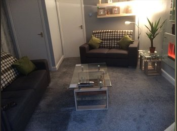 EasyRoommate UK - Male Lodger Wanted, Redditch. Gay Friendly., Redditch - £350 pcm