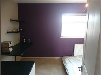EasyRoommate UK - Spare double room to rent, Slade Park - £530 pcm