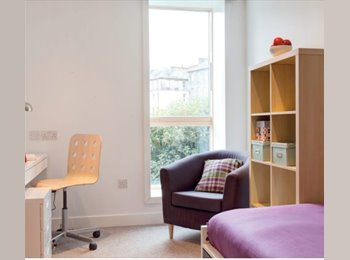 EasyRoommate UK - Brand new room with natural light in Old Town, Old Town - £635 pcm