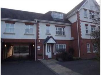 EasyRoommate UK - Double Furnished Room in Boldemere, Boldmere - £350 pcm