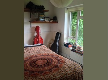 EasyRoommate UK - Bright, sunny room in friendly flat!, Withdean - £400 pcm