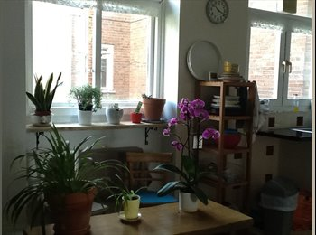 EasyRoommate UK - Bright and spacious double bedroom in Homerton , Lower Clapton - £678 pcm